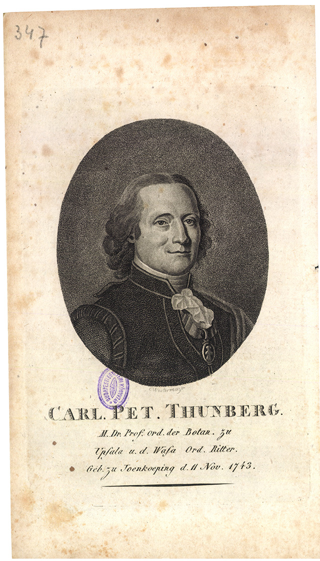 Carl. Pet. Thunberg